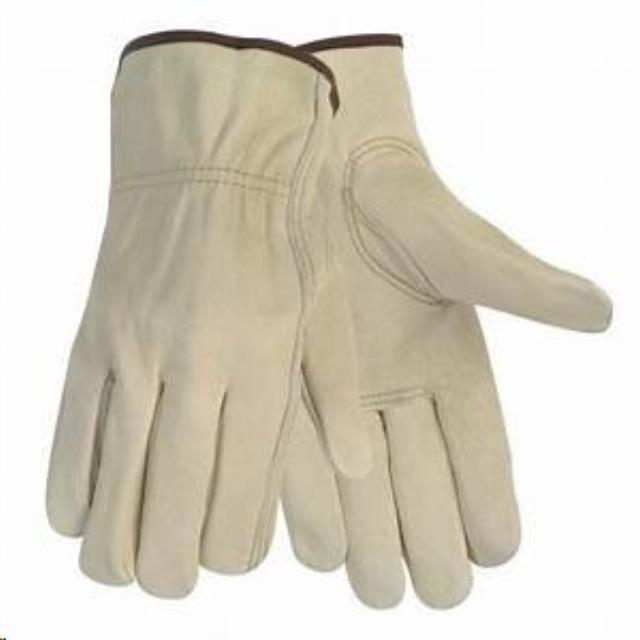 Where to find GLOVES, PREMIUM LEATHER in San Jose