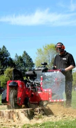 Where to rent BARRETO TRACK STUMP GRINDER in Campbell CA