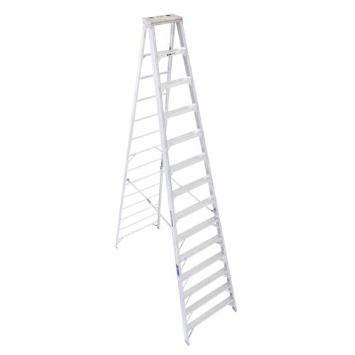 Where to find 14  STEP LADDER in Campbell
